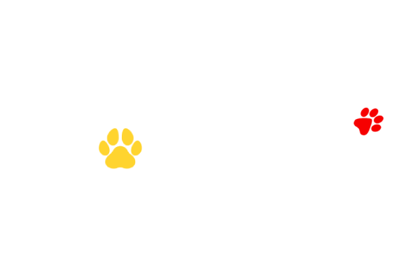 fundacion Julieta